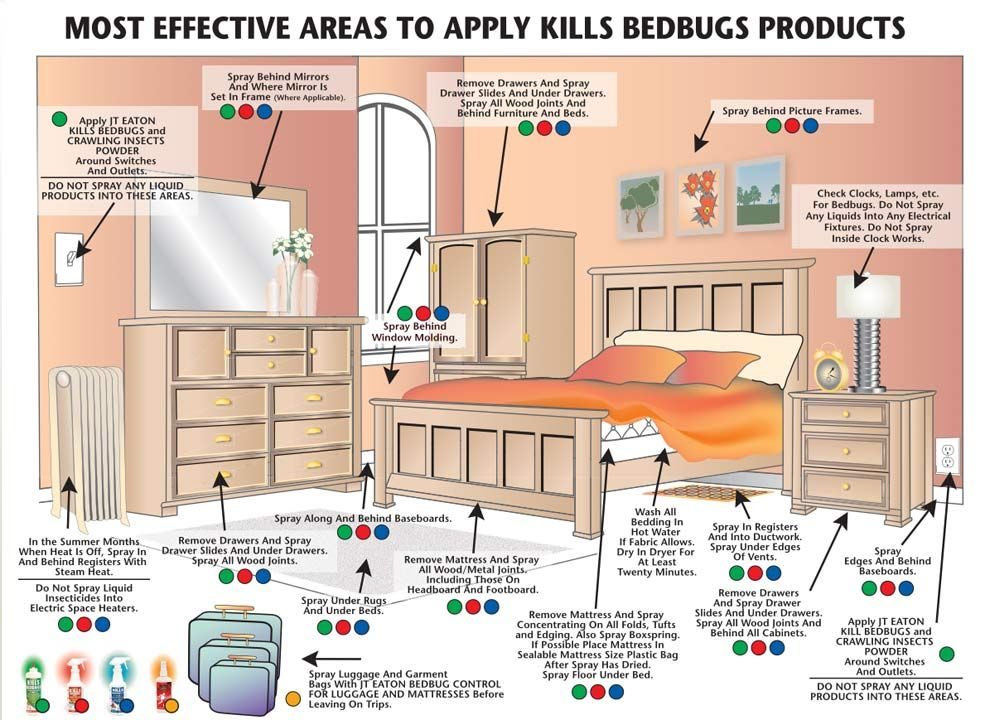 Eaton KILLS BED BUGS (red Label) Is An Oil Based Ready To Use Bed