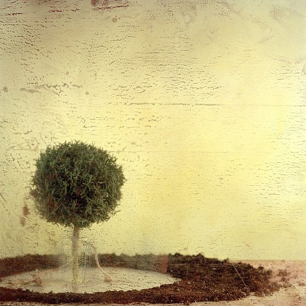 by Carlos Tarrats