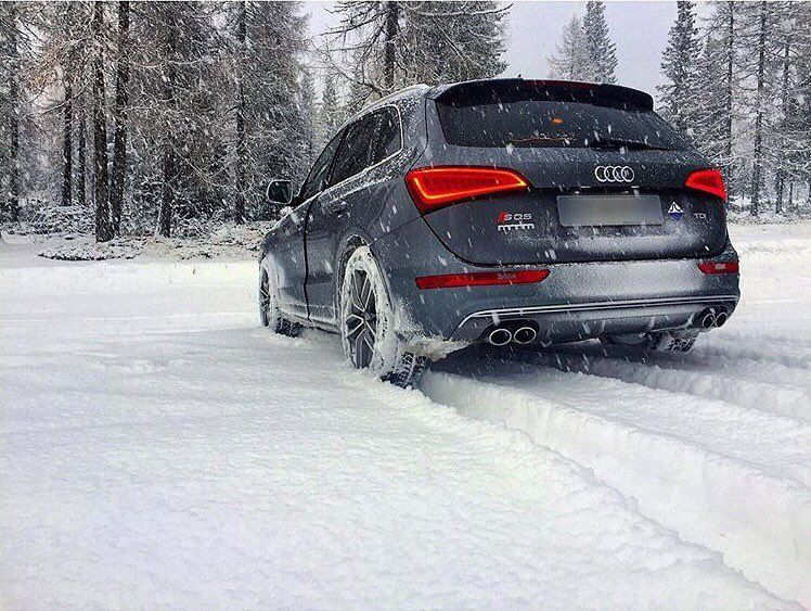 Hungry Like A Wolf Quattro Looking For Some Prey Audi Sq5 Quattroseason Sleigh Oooo Audidriven What Else Pic Edoard Audi Q Dream Cars Audi Audi Q5