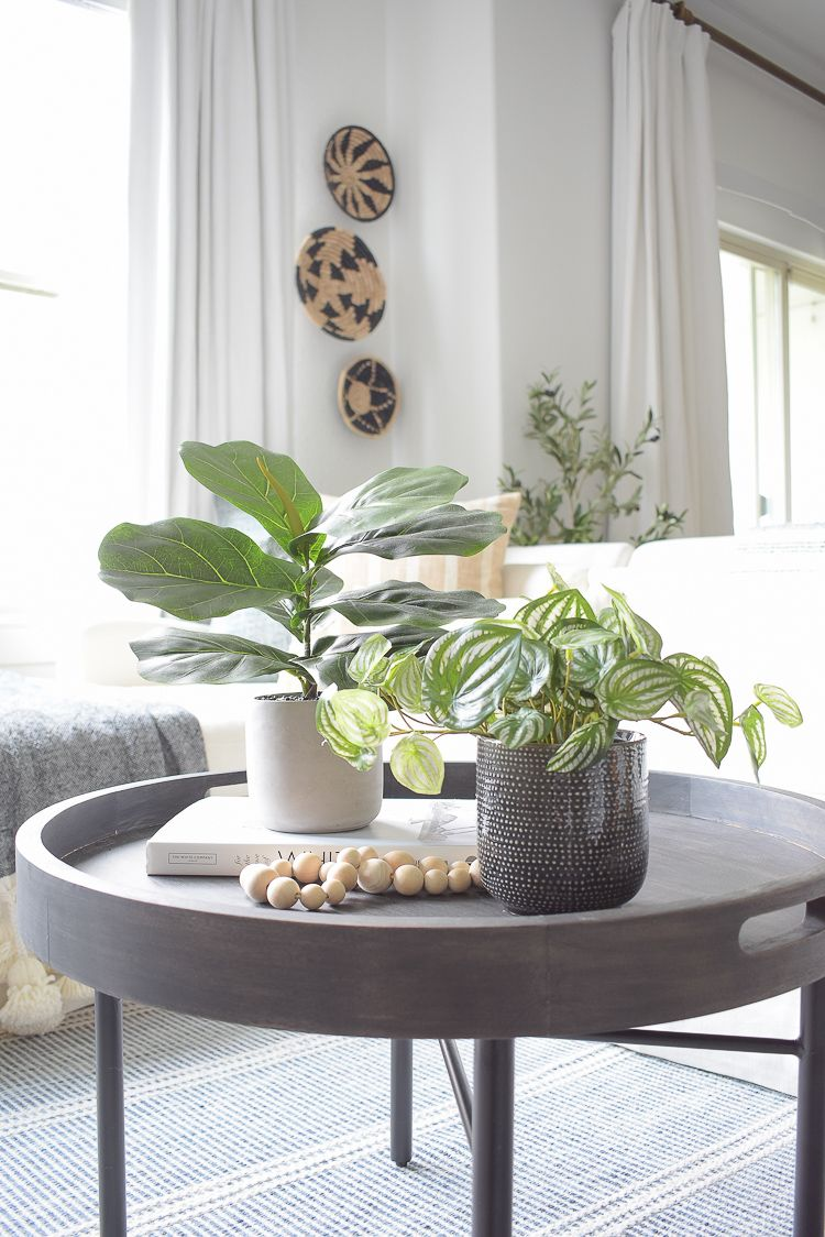 Best Modern Faux House Plants Where to Buy + How to