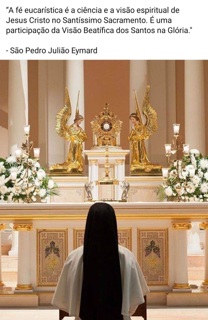 A Fe Eucaristica E A Ciencia E A Visao Espiritual De Jesus Cristo