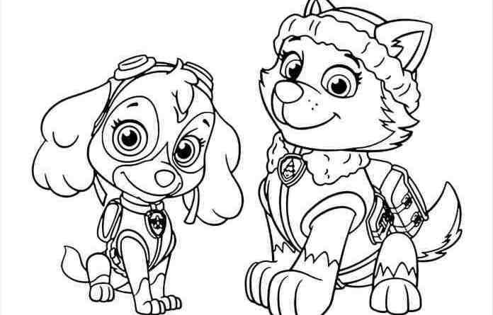 Pin by Coloring Fun on Paw Patrol | Nick jr coloring pages ...