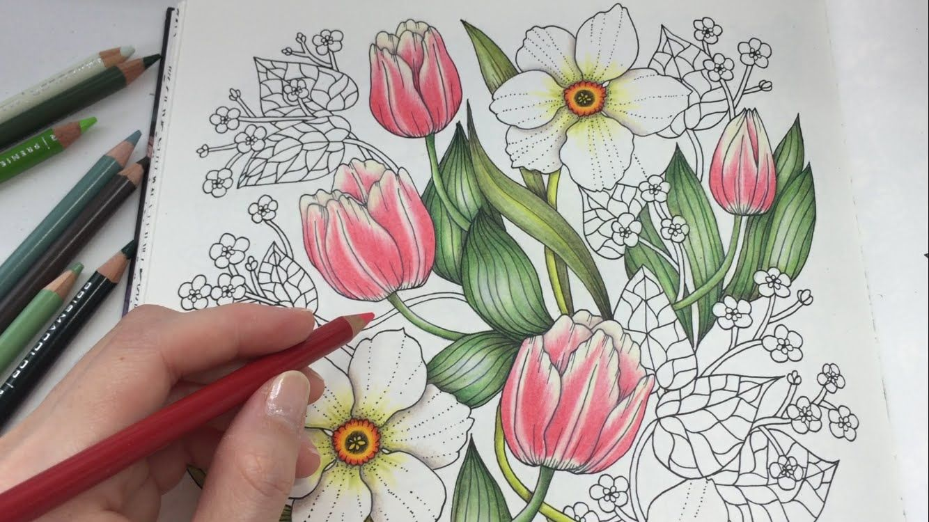 How I Color Tulip Blomstermandala Coloring Book Coloring Books Color Pencil Drawing Color Pencil Art