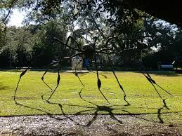 .. Spider by Louise Bourgeois Sculpture Garden New Orleans Museum of Art | by jennifer126