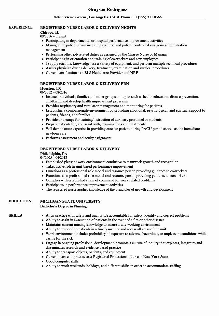 32 Best Of Labor and Delivery Resume (With images
