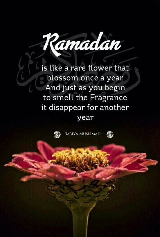 Ramadan | Sprüche | Pinterest | Ramadan, Islam and Islamic