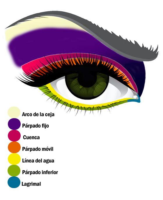 Dibujo con las partes del ojo