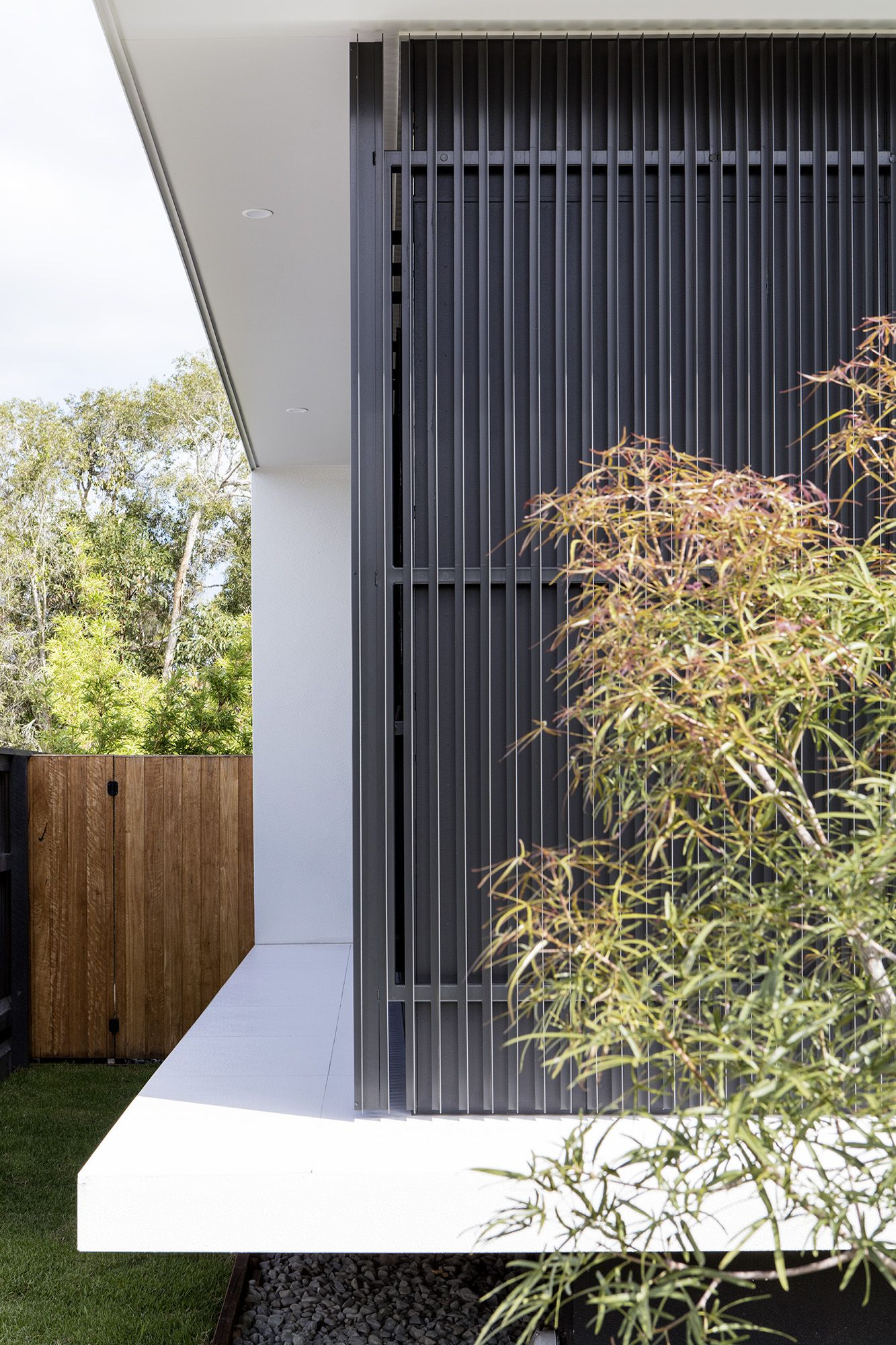 Modern home design by immackulate designer homes the peregian springs project located on sunshine coast qld australia also rh pinterest