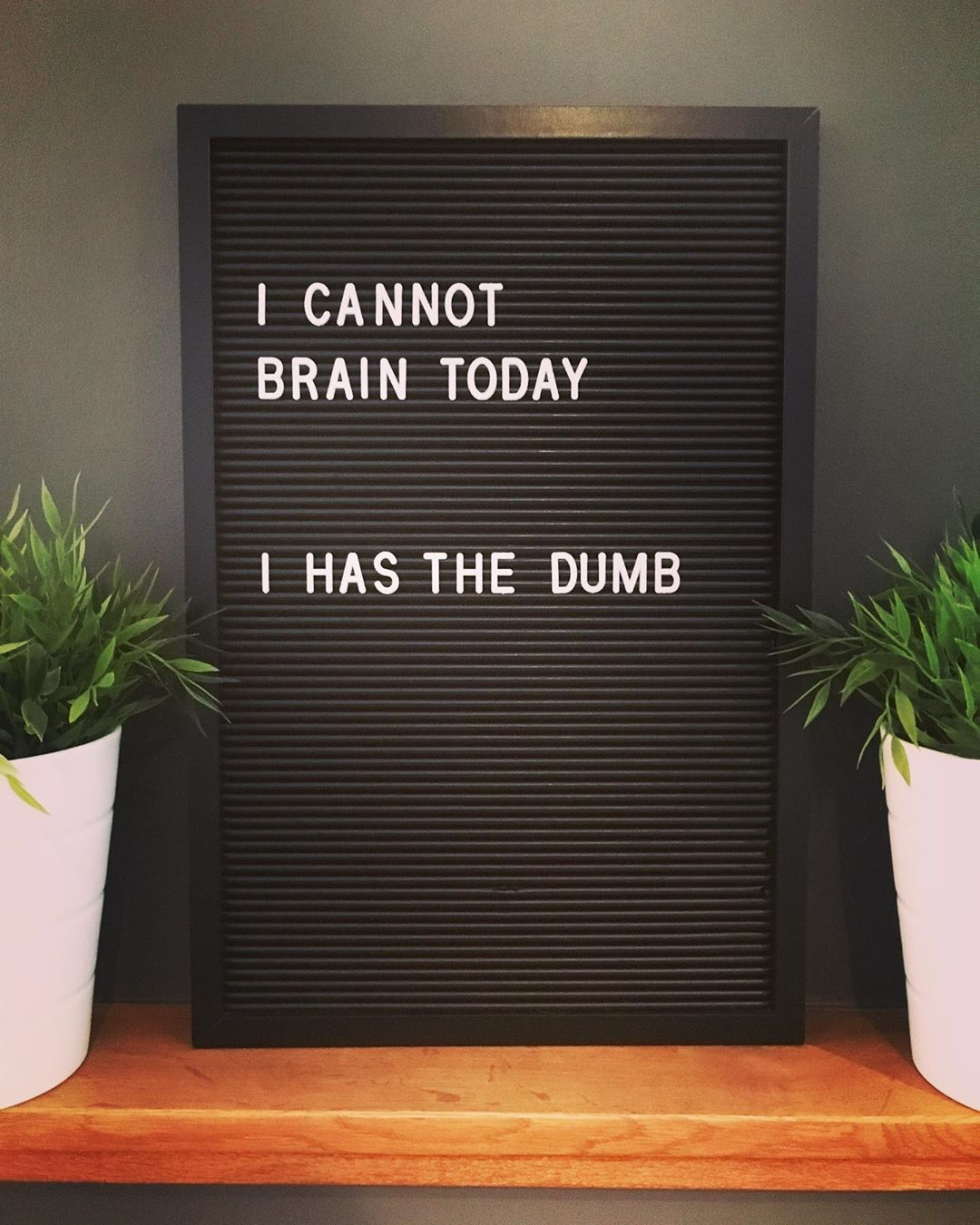 """Quotes Galore on Instagram """"Just too freakin' tired to brain today            Credit ✍🏻  a mug  quote quotes letterbox letterboxquotes letterboard…"""" is part of Message board quotes -"""