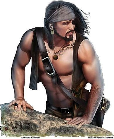 Sexy gay pirate
