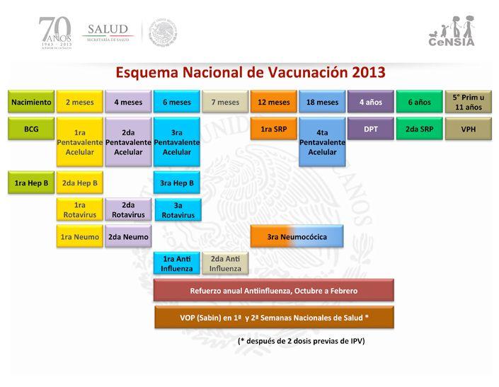 ¿Sabes qué vacunas le corresponden a tu bebé? Aquí el calendario oficial del Centro Nacional para laSalud de la Infancia y la Adolescencia.