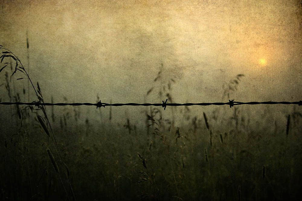 Dawn Photograph,  Barbed Wire, print, sunrise photo, home decor, Fine Art Photograph fathers day. $45.00, via Etsy.