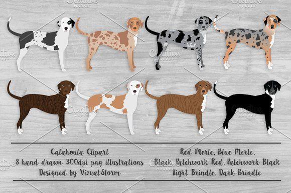 Catahoula Leopard Dog Illustration With Images Leopard Dog