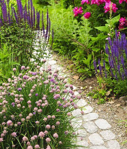 Grundkurs Gartengestaltung - Blickpunkte und Durchgänge Gärten