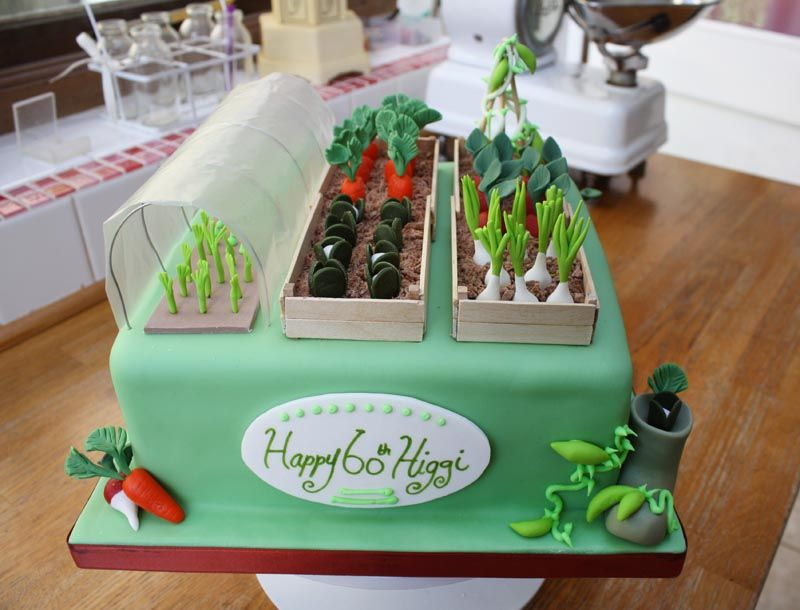 allotment cake for 60th birthday wellies vegetables poly tunnel carrots pin