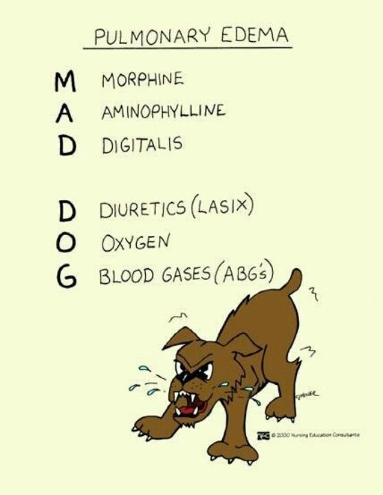 Pulmonary edema = mad dog | physical therapy notes | Rn