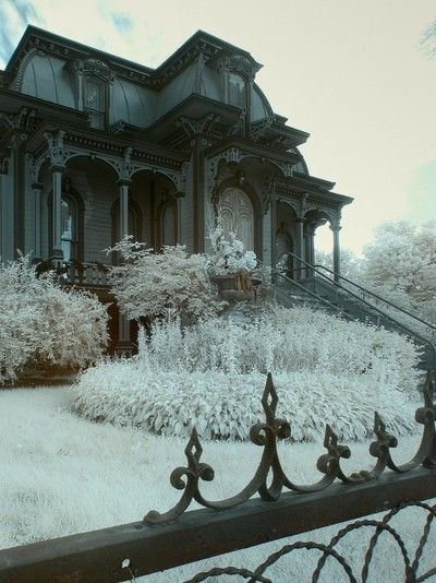 What a wonderfully gothic house.
