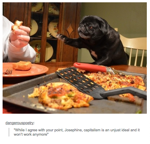 25 Times We Were Grateful For Tumblr