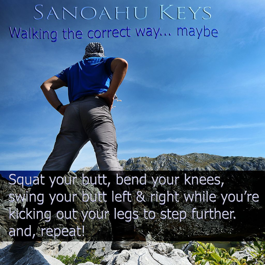 https://flic.kr/p/SJm4wc | Learning to walk / hike | Last year I decided to walk around the outer edge of Oahu, Hawaii. Someone asked me what what my step length was.   I didn't know but it seems that I have a short step. So, a friend told me to squat a bit, swing my butt from side to side and step out and walk.   Well, I found out that I was less tired, stepped further, and got to where I was going sooner.  Hugzzs 🌺 SanoahuKeys #SanoahuKeys
