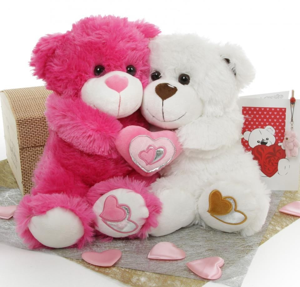 Cute teddy bear pictures google pinterest - Tedy shop ...
