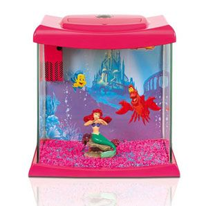 This Fish Tank Has Me Written All Over It With Images Girls