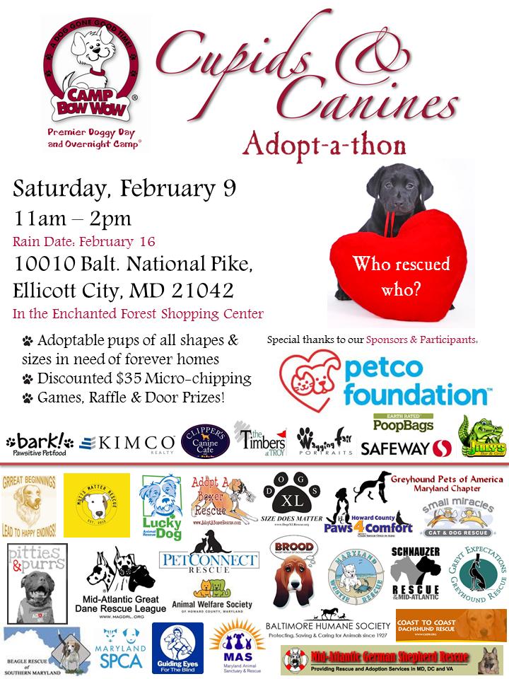 Cupids & Canines Adoption event. Ellicott City, MD