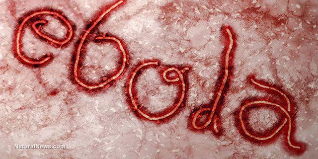 what will kill the ebola virus