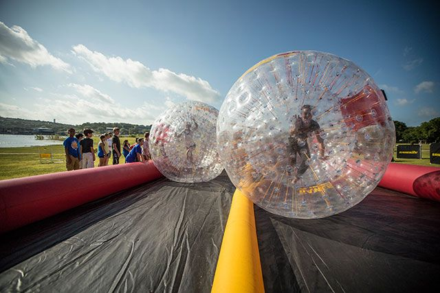 Giant Hamster Balls Human Hamster Ball Rentals
