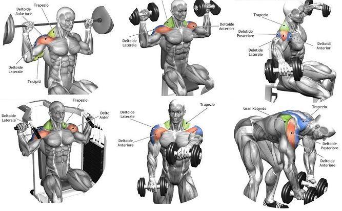 best shoulder workouts