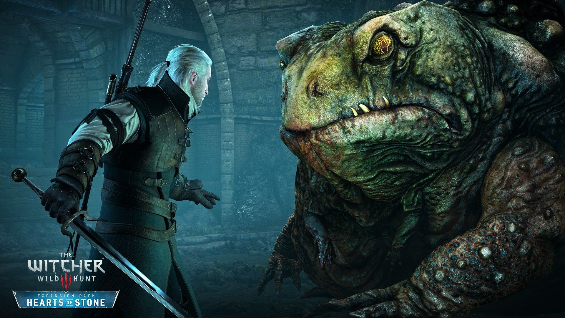 Wallpaper The Witcher 3 Hearts Of Stone Monster Frog Battle