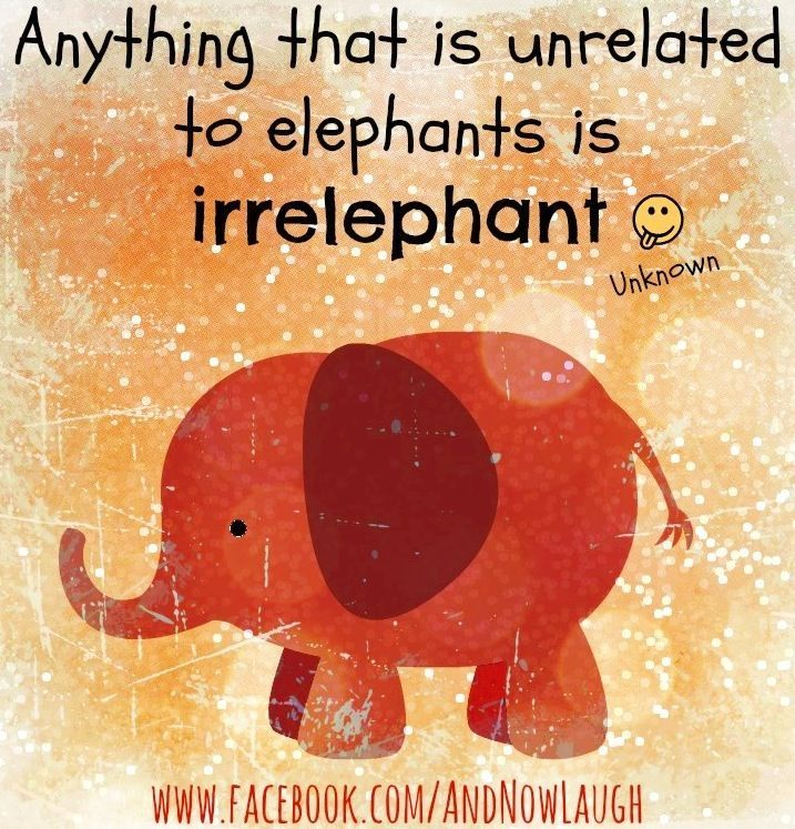 Image Result For Quotes About Elephants Puns Elephant Quotes