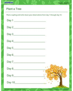 6th Grade Science Worksheets Free Printable - Karibunicollies