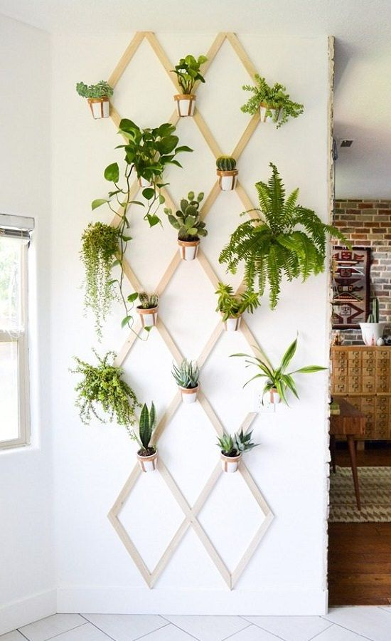 16 Indoor Plant Wall Projects That Anyone Can Do Indoor Mini