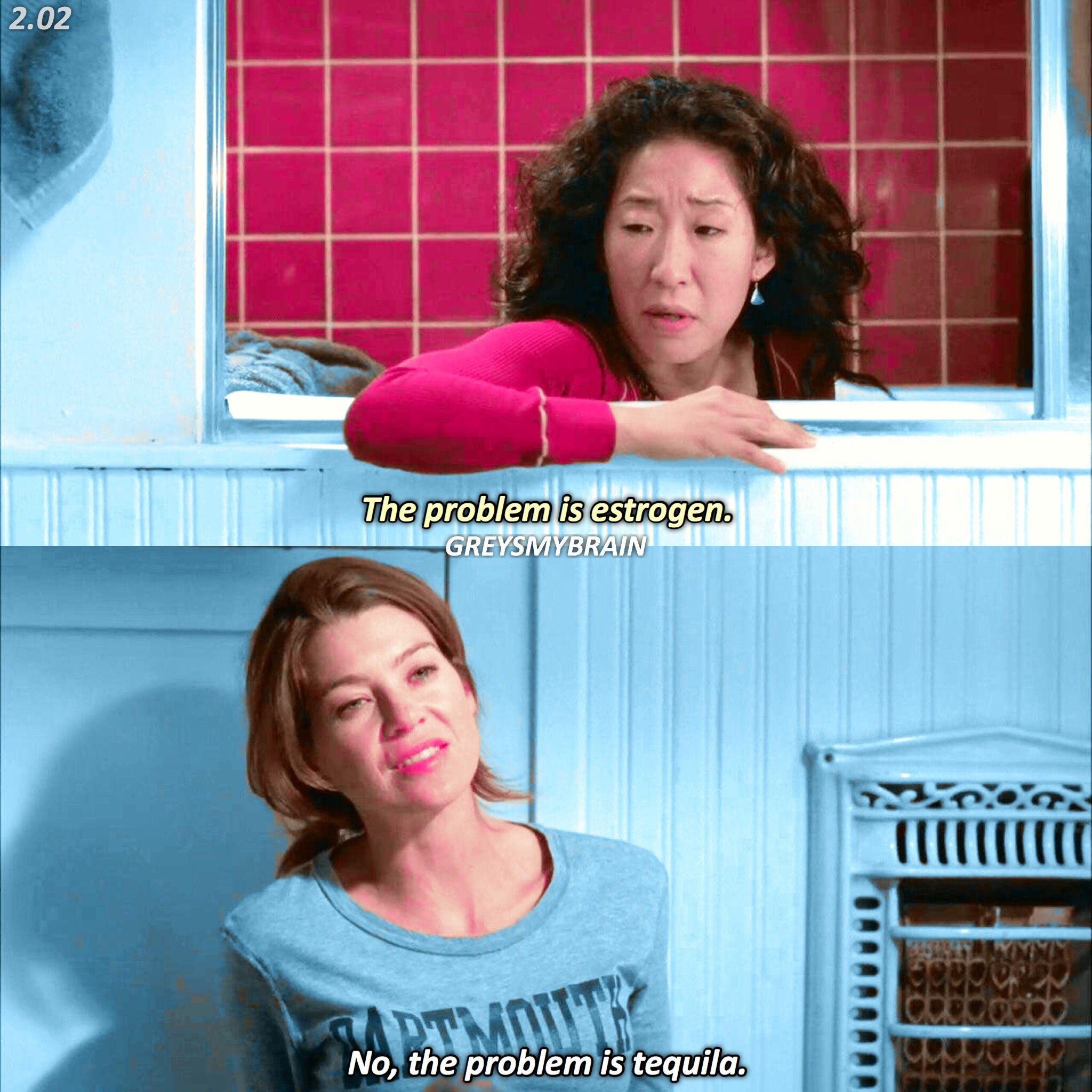 2 02 Iconic Grey Anatomy Quotes Greys Anatomy Memes Greys Anatomy Funny