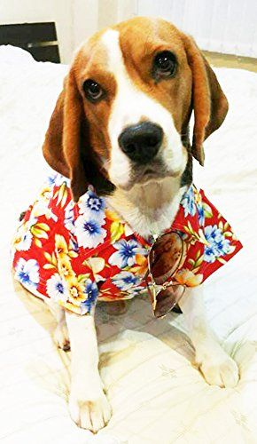 Casual Hawaiian Beach Pink Floral Shirt Dog Clothes For Cat Dog