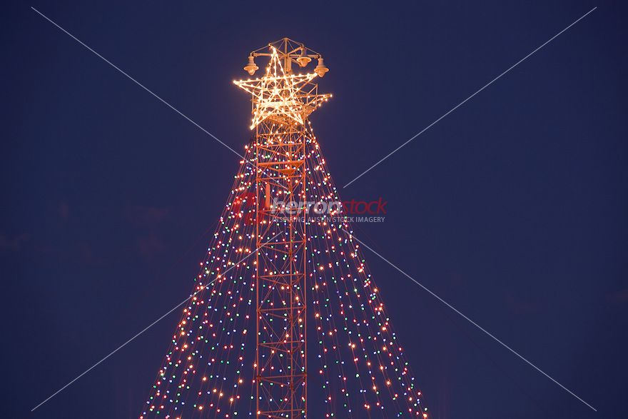 The Zilker Park Christmas Tree Has A Historic Beginning In The Austin Of The 1890 S Many Areas Were Underdeveloped Hilly And U With Images Photo Tree Tower Holiday Tree