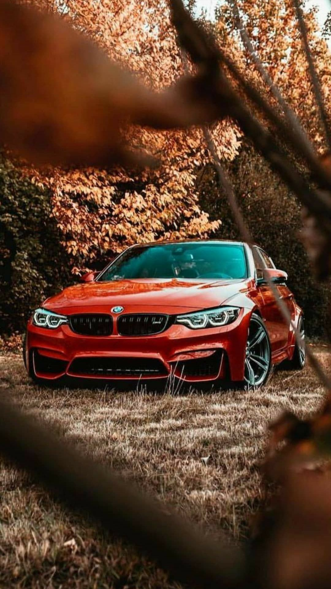 Pin By Ani Liparteliani On Nature Photography In 2020 Bmw M3 Wallpaper Luxury Cars Bmw Dream Cars Bmw