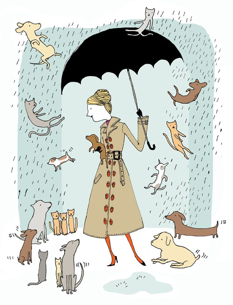 Raining Cats Dogs Raining Cats And Dogs Dog Art Affordable Art Prints