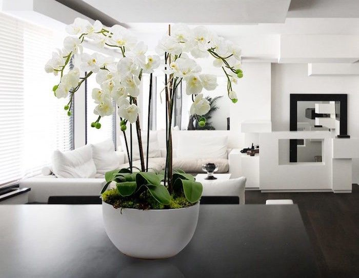 plante artificielle de faux v g taux plus vrais que nature orchid es. Black Bedroom Furniture Sets. Home Design Ideas