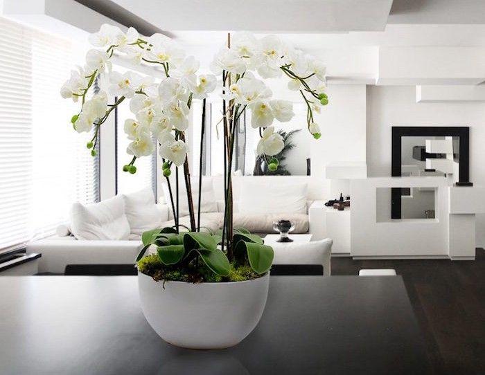 plante artificielle de faux v g taux plus vrais que nature orchids. Black Bedroom Furniture Sets. Home Design Ideas
