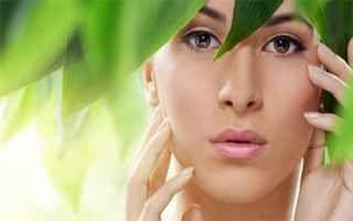 olio di canapa  canapa per la pelle