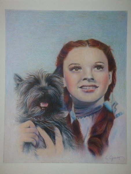 dorothy and toto color pencil drawing art work pinterest