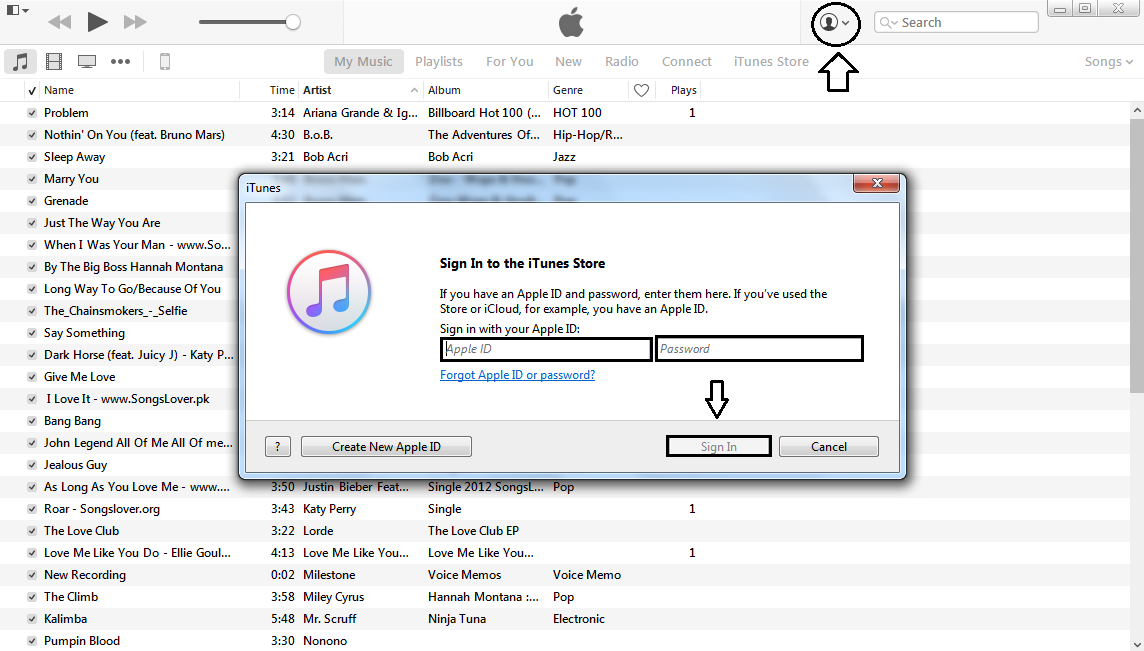 Key to access iTunes | Purchase and download songs from