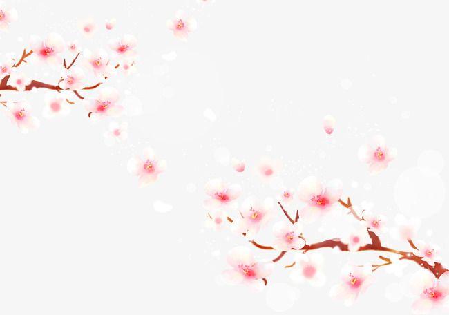 Cherry Blossoms Falling Material Cherry Blossom Clipart Sakura Creative Falling Cherry Blossoms Png Transparent Clipart Image And Psd File For Free Download Flor De Cerejeira Flor De Cerejeira Arte Flores De