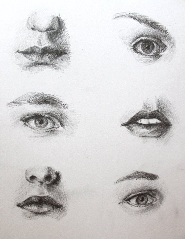 12 Astounding Learn To Draw Eyes Ideas In 2020 Eye Drawing Realistic Drawings Drawings