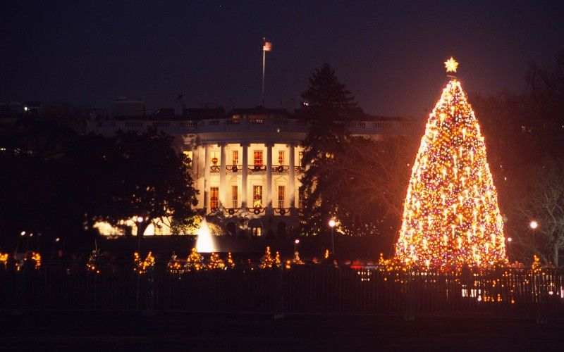 The holiday season in DC kicks off with the lighting of