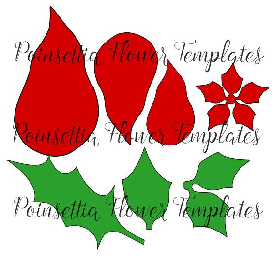 Christmas Poinsettia Paper Flowers Template Flower Svg Cut Files