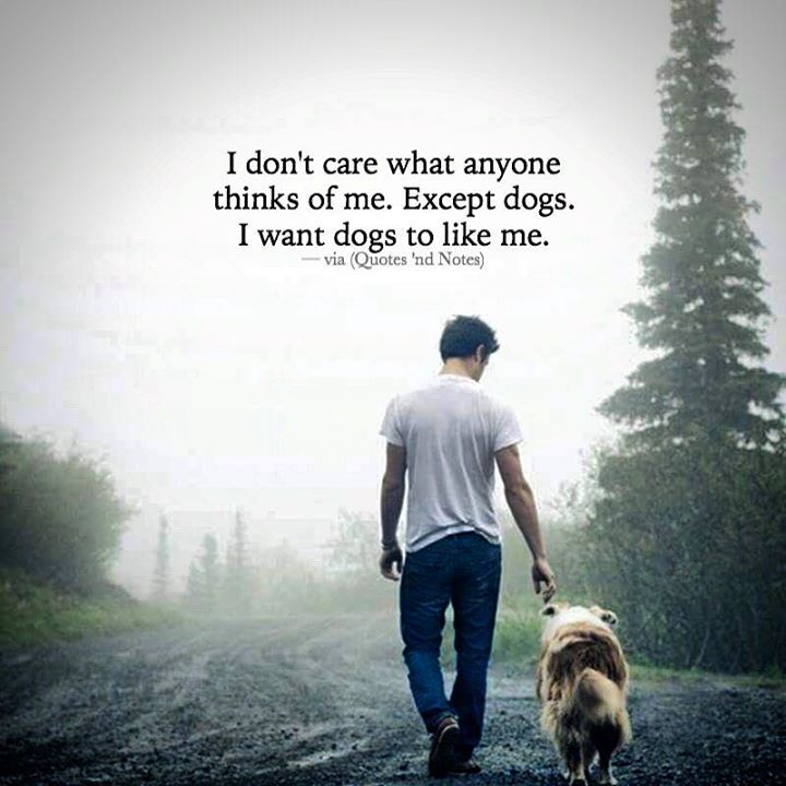 I Donu0027t Care What Anyone Thinks Of Me. Except Dogs. I Want