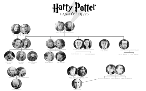 This Is Awesome Harrypotter The Other Day I Finished Reading All Of The Harry Potter Books With A Litt Harry Potter Family Tree Harry Potter Family Tree