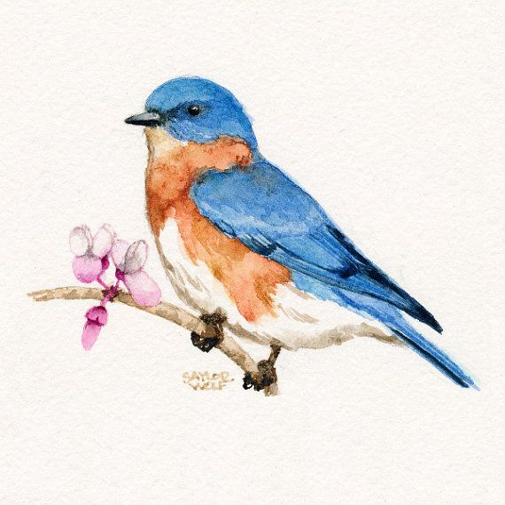 Etsy listing at https://www.etsy.com/listing/102268680/bluebird-art-print-of-watercolor-bird